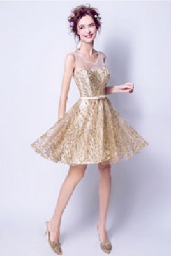 Champagne Sequined Fabrics Homecoming Dresses A-link Sexy prom Dresses TSJY-050