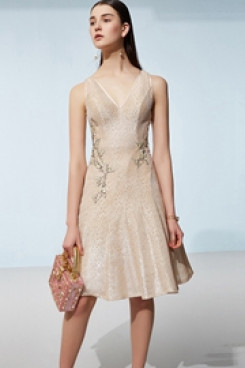 Dressy Champagne Embroidery Homecoming Dresses cyh-009